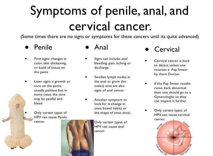 a pénisz növekedésének okai