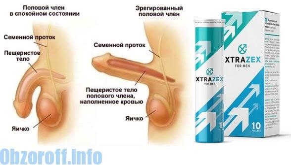 mi az erekció potenciájának növelése)