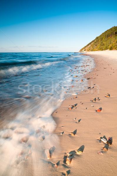 pufók tengerpart)
