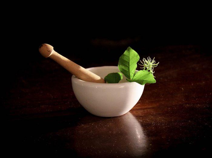 Vágyfokozó gyógynövények