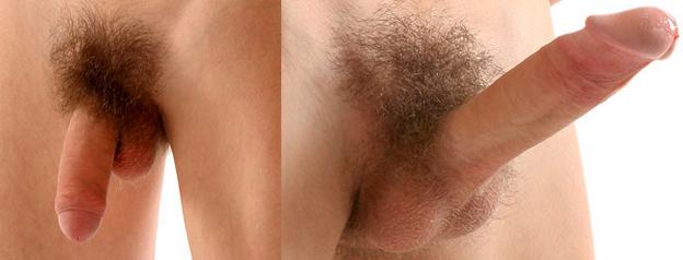 az erekció során a pénisz feje elkékül)