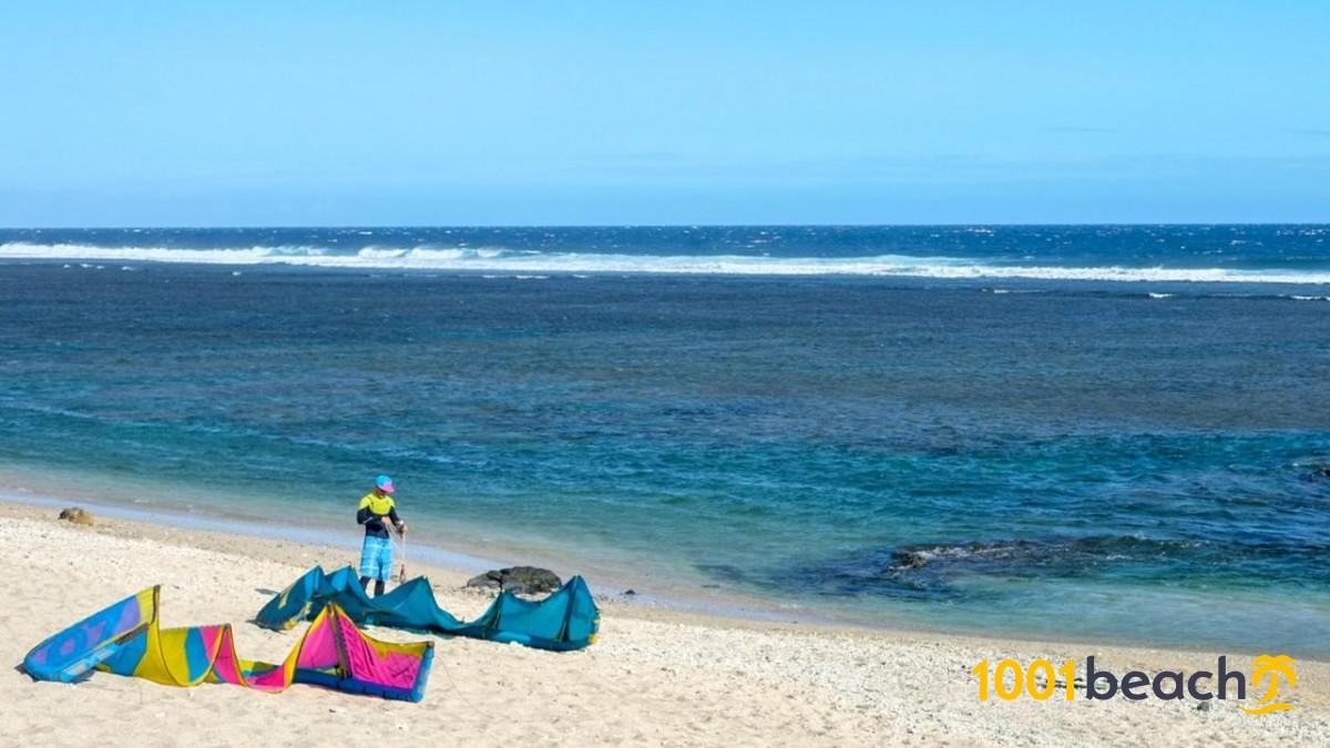felállítani a tengerparton kenőcs az erekció javítására