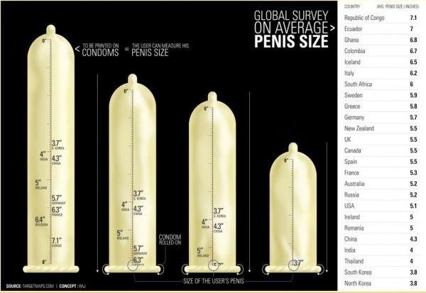 mekkora a legkisebb pénisz